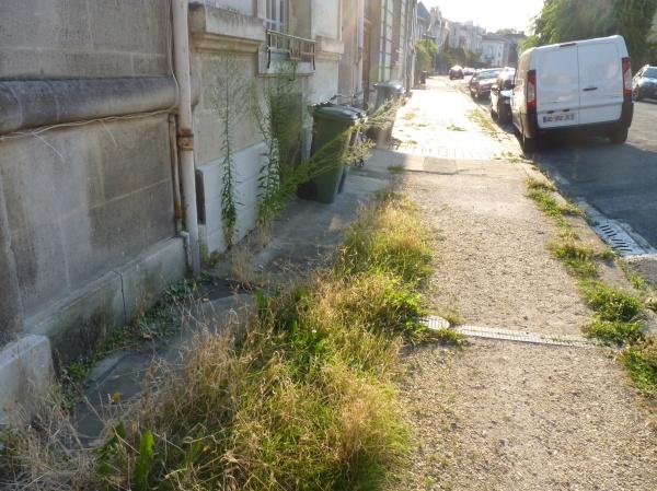 Caudéran, ses trottoirs, s nature