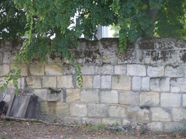 Ancien mur du château Borie