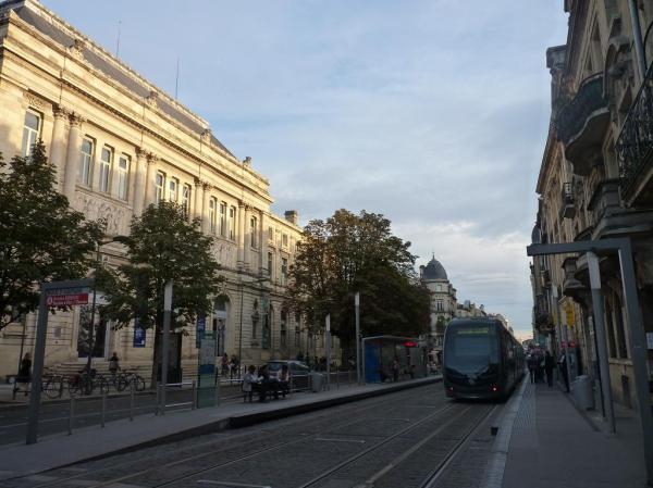 Le tram, élément central du cours