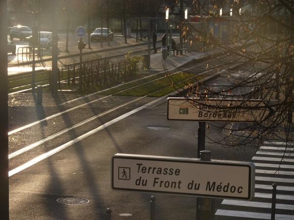 Le tram et ses pieds de vigne au pied de la Terrasse du Front du Médoc