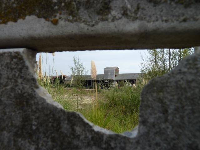 L'ancienne usine Soferti depuis la rue Chaigneau