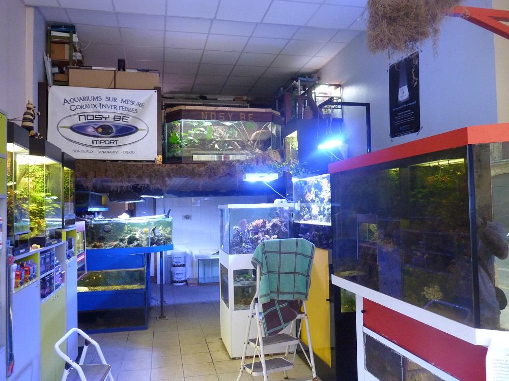 Magasin aquarium bordeaux - Animalerie bordeaux lac ...