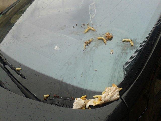 Attentat au kebab - Mars 2014